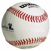 Wilson Official Little League Leather Baseball