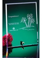 "6""x8"" Glass Plaques With Brass Pins"