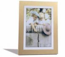 Corona Silver Frames (holds 5x7 Image)