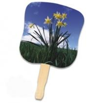 Stock Design Hand Fan - Daffodils