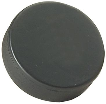 "3"" Foam Hockey Puck Stress Reliever"