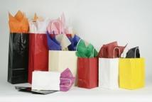 "White Gloss Shopping Bag (5-1/2""x3-1/4""x8-3/8"")"