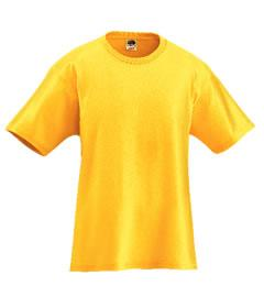 5.6 oz. Heavy Cotton Adult Tee Shirt