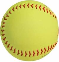 Wilson Official Softball