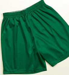 Youth Mini-Mesh League Short